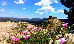 Xátiva (Renate Bomm) Tags: comunidadvalenciana xátiva renatebomm smartphone 52weeksin2018 landscape landschaft 7dwf spanien sky blue