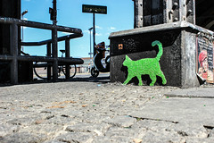 Green Cat (JuliSonne) Tags: streetart urbanekunst mauer wall graffiti colors scene urban pasteup stencil street berlin