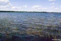 Шацький Національний Природний Парк Озеро Пісочне Прозора вода InterNetri  Ukraine 249