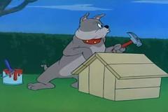Mèo và Chuột Tom and Jerry Tập 72 The Dog House (hokimyen07071993) Tags: shin hyu pinterest my photos