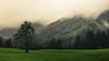 Valley of Trettach (Netsrak) Tags: nebel wolke alpen