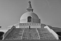 0758 World Peace Pagoda (Hrvoje Simich - gaZZda) Tags: outdoors building religion people monk stairs pagoda worldpeace travel blackandwhite monochrome lumbini nepal asia nikon nikond750 nikkor283003556 gazzda hrvojesimich