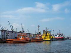LR Hamburg 2018-5190138 (hunbille) Tags: birgittehamburg2018lr germany hamburg harbour boat cap san lorenzo capsanlorenzo elbe river