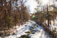 20180203-IMG_2929-Edit (franciscoruela) Tags: hiking winter landscape mt garvey