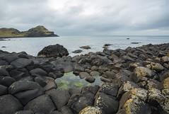 18MAR15 SLYNNLEE-7477 (Suni Lynn Lee) Tags: giantscauseway giants causeway northern ireland ni landscape scenic rocky beach volcanic