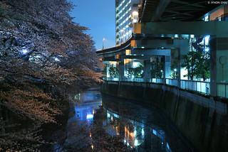 東京・早稲田 ∣ Waseda・Tokyo