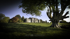 Woodlawn house - The Bright Side (adrianmoorephotography) Tags: woodlawn house ruin galway ireland connacht haunted landscape photography