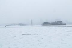 Tempête sur le Vieux-Port (Paul Leb) Tags: montréal québec canada neige nieve snow tempête storm stlawrenceriver fleuvesaintlaurent glace ice