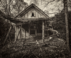 Abandoned (PT Photo) Tags: georgia blackwhite sigma1020mm abandoned ptphoto silverefexpro2 home woods