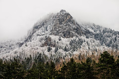 Winter at Röthelstein. (and.schweighofer) Tags: austria österreich landscape landschaft fog nebel foggy fuji fujifilm trees bäume winter snow schnee colour ice cold mountain berg forest wald fels gestein rock