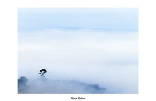 Niebla bajo el Castillo de Belmez
