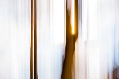 Open Space Movement 4 (pni) Tags: intentionalcameramovement sky sun tree karis karjaa finland suomi pekkanikrus skrubu pni