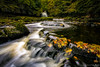 Gathered Leaves (peterwilson71) Tags: waterfall westburton leaves flow water autumn yorkshire beautiful cascade cold droplets exposure evening reflections foliage falls grass green river longexposure landscape motion moss marsh nature rocks riverside