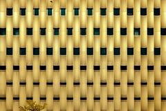 Golden wall (Maerten Prins) Tags: netherlands nederland holland utrecht cope papendorpseweg papendorp parking garage gold metal pattern gaatjes dots holes tree reflection windows geometry geometric lines line curve curves abstract nature bird