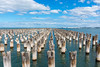 Lead the way (Scottmh) Tags: 2018 princes australia autumn d7100 melbourne nikon pier port station victoria water pylons wood rows sky clouds