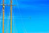 En ple vol  ♪♫ (Fnikos) Tags: sky blue flight boat sailboat seagull mast mástil arbero outdoor