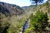 Wutachblick (ivlys) Tags: schwarzwald blackforest wutachschlucht gorge fluss river fels rock pfad path landschaft landscape natur nature baum tree ivlys