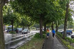 D_2018-05_0531 (Gorzów Codziennie) Tags: gorzow gorzów poland polska lubuskie deszcz rain