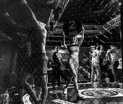 MMA_Yunquera-Henares_11-02-2017_0082 (byJMdF) Tags: verde canon eos c5d mk ii aficionado amateur lightroom documental foto photo photography fotografia color bn deportes artes marciales mixtas karate kickboxing boxeo muay thai judo lucha libre grecorromana jiu jitsu brasileño wushu san da sambo taekwondo hombres de honor 82 la jaula yunquera henáres guadalajara españa andalucia andalusia