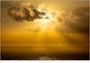 Papagaaiduikers (nandOOnline) Tags: atlantischeoceaan eilanden faroe faroer fã¸royar landschap oceaan gasaldalur papagaaiduikers vogel zon zonlicht zee