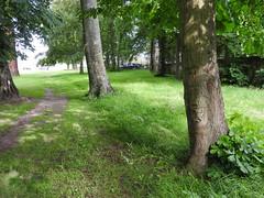 Nichoir du parc du château