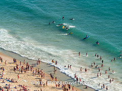 Portugal 2017-9021275 (myobb (David Lopes)) Tags: 2017 adobestock allrightsreserved atlanticocean europe nazare portugal aerialview beach copyrighted day daylight enjoyment highangleview leisureactivity ocean outdoors sand sea sunbathing surfboard surfer swimming tourism touristattraction traveldestination vacation watersedge wave waves ©2017davidlopes