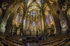 Cathédrale Sainte-Croix de Barcelone (derepy) Tags: églises churches gothique fisheye