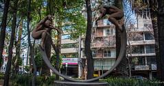 2018 - Mexico City - Jorge Marin Bronze (Ted's photos - Returns 23 Jun) Tags: 2018 cdmx cityofmexico cropped mexico mexicocity nikon nikond750 nikonfx tedmcgrath tedsphotos tedsphotosmexico vignetting jorgemarin sculpture bronzesculpture streetscene street