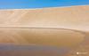 DSC00064 (alvinliuck) Tags: 山陰 鳥取砂丘 鳥取 tottori sand dunes