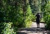 A Walk in the Forest (Vegan Butterfly) Tags: outside outdoor whitemud ravine nature reserve person candid people walk walking exercise trail path forest trees plants