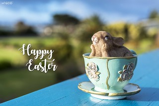 Hippity, Hoppity Easter To You