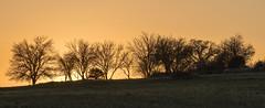 Sunset (GC - Photography) Tags: sky atardecer puestadesol sunset yebes guadalajara castillalamancha españa spain nikon d500 tokinaaf1116f28 gcphotography paisaje landscape naturaleza nature