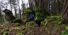 Enormes Blocs dans le bois Français de Blégny - Jura (francky25) Tags: enormes blocs dans le bois français de blégny jura prospection karst franchecomté doubs