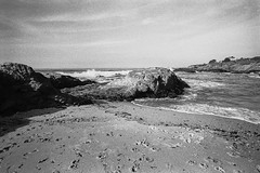 Bean Hollow Beach, California (Postcards from San Francisco) Tags: m6 film analog trix berspeed california highway1