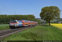 Future Network... (Marco Stellini) Tags: db regio br 146 247 traxx bombardier maintal bahn express