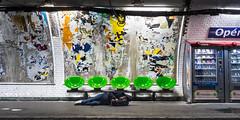 Schneider-Kreuznach Retina Curtagon 28mm f/4 - DSCF0878 (::nicolas ferrand simonnot::) Tags: paris | 2018 schneiderkreuznach curtagon 28mm f4 60s 5 blades iris dkl mount f56 plafond mur architecture streetphotography street photography portrait candid metro subway gate station wide open depth field fixed length prime manual classic japanese lens noir blanc intérieur personnes profondeur de champ vivid color