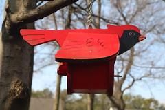 Birdhouse in the Backyard (hank278) Tags: birdhouse red photoaday pad bluesky sky