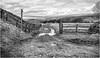 Harwood . (wayman2011) Tags: fujifilm23mmf2 lightroomfujifilmxpro1 wayman2011 bwlandscapes mono rural tractors signpost pennines dales teesdale harwood countydurham uk