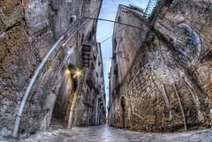 Alley Cat (Rickydavid) Tags: vicolo alley gattodivicolo alleycat murales streetart palermo hdr samyang 8mm fisheye nikon vicolocastelnuovo palazzocottonecastelnuovo