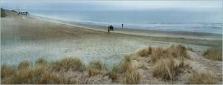 Dunes, plage et la mer du Nord, De Banjaard, Kamperland, Noord-Beveland, Zeelande, Nederland
