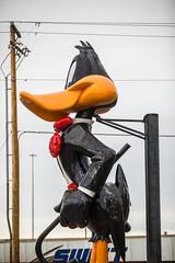Daffy (Thomas Hawk) Tags: america casper daffyduck looneytoons looneytunes sanfords sanfordsgrubpub usa unitedstatesofamerica unitedstates wyoming restaurant us