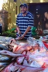 Fish monger (posterboy2007) Tags: ajijic mexico wednesday market fishmonger redsnapper