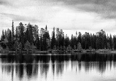 Cabin in the Woods (miiav) Tags: cabin lapland finland summer lake forest river day photography canon canon60d