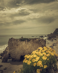 A big, dramatic rock in El Matador Beach in Malibu, California, in a cloudy day with some yellow flowers on the foreground. (pedferr) Tags: horizon rock sunny sand color flowers cinematic nature water surf moody hill sea morning unitedstatesofamerica beach ocean outdoors yellow pacific dramatic stone usa landscape sunset cloudy vertical waves trip sky mystic clouds sunrise summer scene colorful warm travel shapes rocks pattern 4x5 california lifestyle malibu mountain