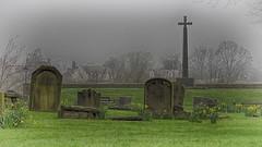 bad dreams (R.Duran) Tags: durham england inglaterra europa europe niebla mist onirico sueño