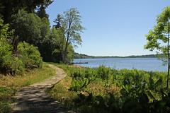 WA_1506_Black Lake (jedibob) Tags: black lake olympia washington scenic outdoors nature trail