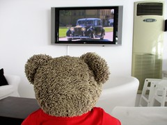MEGHAN!!! 35/51 (pefkosmad) Tags: tedricstudmuffin teddy ted bear holiday holibobs animal cute toy cuddly soft stuffed fluffy plush pefkos pefki pefkoi rhodes rodos greece greekislands griechenland hellas stellahotel