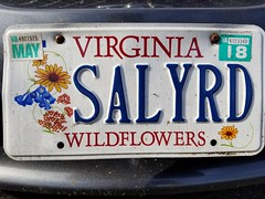 Ride Sally Ride (Al Green - Mustang Sally) (Gamma Man) Tags: algreen ridesallyride algreenridesallyride licenseplate plate rva ric va virginia richmond richmondva richmondvirginia elichristman elijahchristman elijameschristman elijahjameschristman elichristmanrva elijahchristmanrva elichristmanrichmondva elichristmanrichmondvirginia elijahchristmanrichmondva elijahchristmanrichmondvirginia vanitytag numberplate wankertag customnumberplate musicseries vanityplate