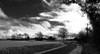 Filtre infrarouge (François Tomasi) Tags: infrarouge filtreinfrarouge yahoo google flickr françoistomasi tomasiphotography droué justedutalent monochrome blackandwhite noiretblanc reflex nikon lights light lumière iso pointdevue pointofview pov photo photographie photography photoshop vue panorama campagne nature trees tree arbres arbre ciel sky clouds cloud nuages nuage digital numérique traitementdimage mai 2018
