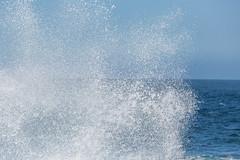 815A2898 Ocean Wave Mist (hobbitcamera) Tags: pointlobosstatenaturalreserve carmelcalifornia carmelcalif carmelbythesea carmelbytheseacalifornia carmelca oceanwave oceanwaves